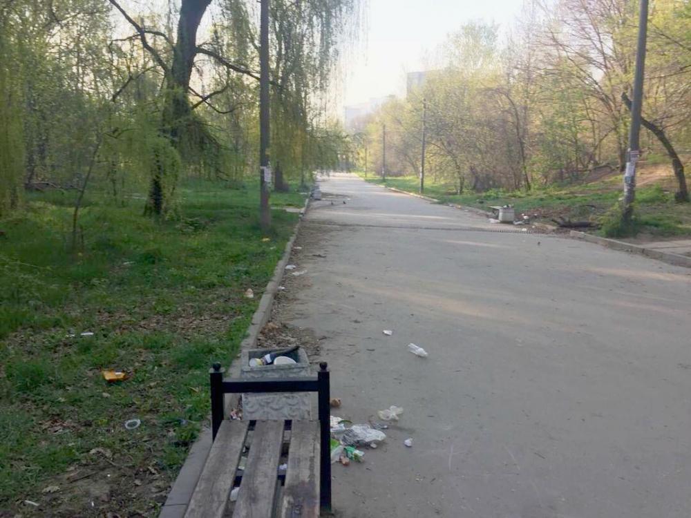 Рощу «Дубки» не спасают даже субботники – вдоль дорожек «гуляет» только мусор из переполненных урн