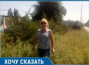Травой зарос вьезд в Таганрог - на «радость» гостям и туристам