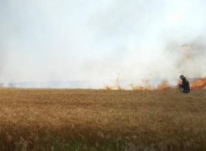 В районе трассы «Таганрог-Ростов»  горели неубранные поля