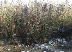 Таганрожцы оставляют после себя горы мусора