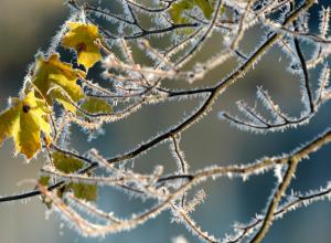 В Таганроге ожидается похолодание