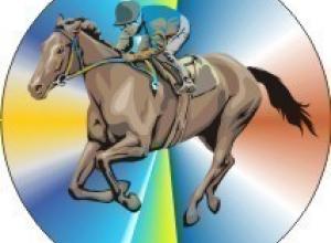 Таганроженка победила в специальной олимпиаде по конному спорту