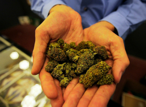 Таганрожец задержан полицией за хранение марихуаны