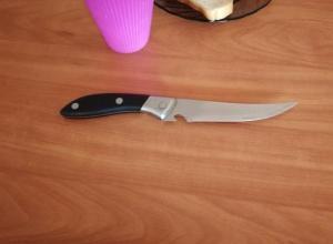 Под Таганрогом мать изрезала дочь кухонным ножом