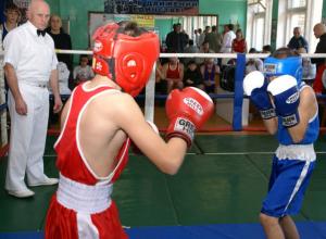 12-летние боксеры из Ростовской области стали победителями на областных соревнованиях