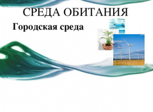Таганрог – «лидер» по  качеству городской среды