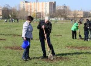 2000 голосов отделяет Таганрог от получения заветной «Аллеи Славы»