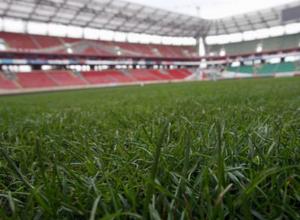 На стадионе «Торпедо» в Таганроге взошла зеленая трава