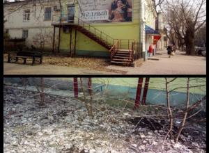 Жители Таганрога поймали злостных нарушительниц экологического баланса