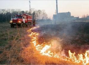 В Ростовской области в этом году произошло 175 возгораний сухой растительности