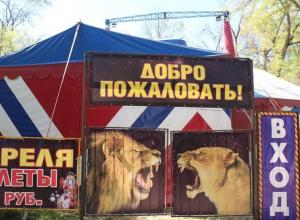 Приехавший в Таганрог цирк сливает нечистоты прямо в парк