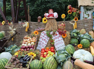 Куда пойти: в Таганроге выходные в честь праздника урожая