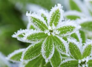 Резкое похолодание ждет жителей Таганрога в выходные дни