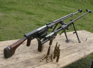 Готовящийся к вооруженной обороне глава ТГОО «ВОСВОД» пойдет за суд