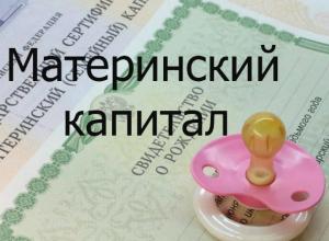 В Таганроге семьи с низким доходом получат ежемесячные выплаты из материнского капитала