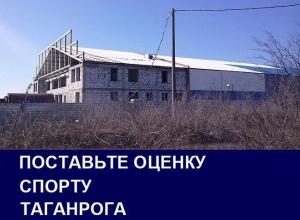 Решение судьбы недостроенного катка стало главной проблемой спорта в Таганроге: итоги 2016 года