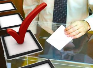 С «добровольным голосованием» таганрожских таможенников будет разбираться ЦИК