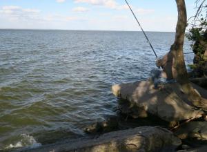 Рыбакам в Таганроге нет места на побережье даже для ловли бычков