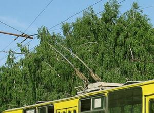 Таганрог обогатил «Липецкпассажиртранс», купив списанные липецкие троллейбусы за 3,5 млн рублей