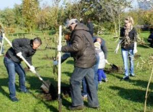 В Таганроге прошел День древонасаждения