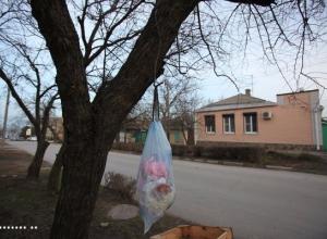 В центре Таганрога предприниматели взялись за поддержание чистоты