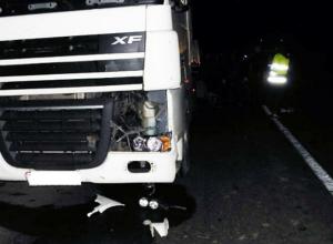 Неизвестного пешехода насмерть раздавила фура на трассе «Ростов-Таганрог»