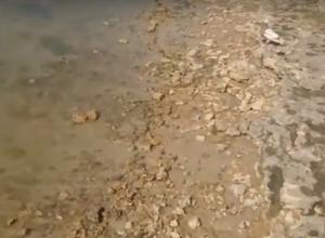 Как удержать желанный песок на  Приморском пляже в Таганроге