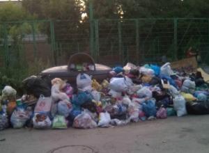 Жильцы  улицы Театральной  пожаловались на  Спецавтохозяйство,  которое утопило их в мусоре