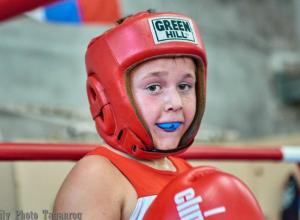 В Таганроге завершаются  городские соревнования по боксу
