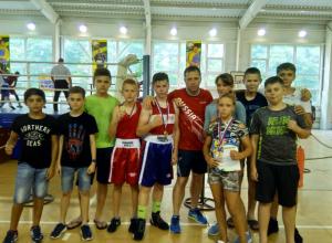 Таганрогский бокс возрождается талантливой молодежью