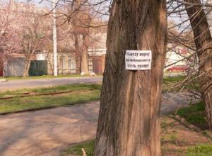 Жители Таганрога придумали оригинальный способ борьбы со стихийными свалками