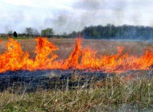 В Ростовской области   ожидается чрезвычайная пожароопасность