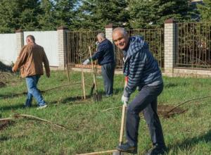 Северный поселок в Таганроге будет краше, там посадили клены