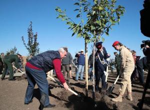 Почти 200 деревьев высадили в саду Победы на «Самбекских высотах» под Таганрогом