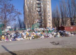 Власти города пересчитали свалки в центре Таганрога