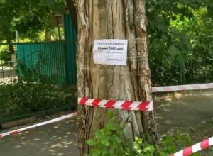 В Таганроге «на глазах» растет новая мусорная куча