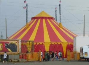 Директор гастролирующего в Таганроге цирка попал в опалу властям