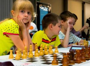 В Таганроге начались  соревнования по шахматам памяти Владимира Дворковича