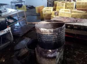 Почти тонну незаконной куриной продукции изъяли под Таганрогом