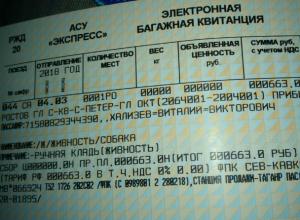 Песику Каштанчику из Таганрога выписали отдельный ж/д билет