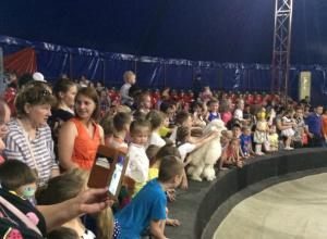 В Таганроге открылся цирк