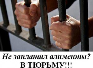 В Таганроге  неплательщика алиментов  посадили в тюрьму