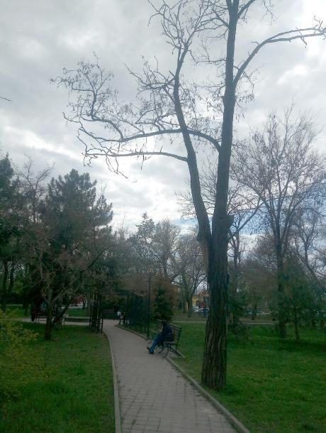 В сквере возле памятника А.П.Чехову в Таганроге опасно гулять