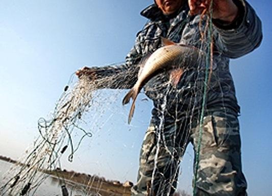 В Таганрогском заливе поймали браконьера с жаберными сетями