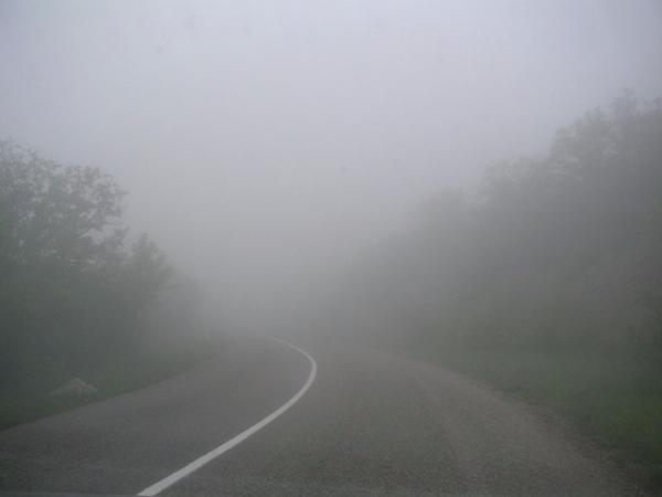 Донские автоинспекторы просят водителей быть осторожнее— Сильный туман