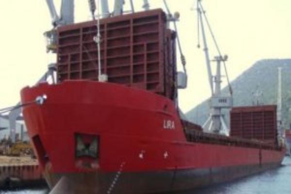 Посольство Турции взяло под контроль ситуацию с задержанным в порту Таганрога судном