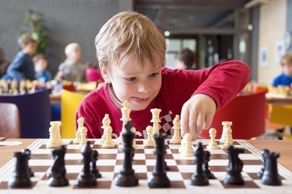 Ростовская область впервые примет участвует в проекте «Шахматы в детские дома»