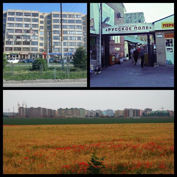 О тебе, любимый город: микрорайон Русское поле