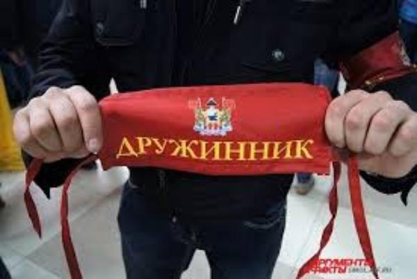 Губернатор Ростовской области обратил внимание  на неорганизованность  народных дружин в Таганроге