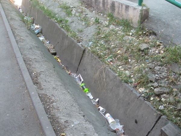 В центре Таганрога в переулке Гоголевском коммунальные службы не убирают мусор